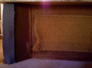 carpet and doormat a.k.a. cat scratch fever